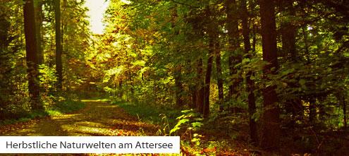 Die letzten Badetage - Herbstbeginn am Attersee | (c) Rainer Sturm pixelio.de