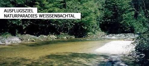 Naturparadies Weißenbachtal