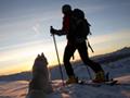 Ski-Touren & Langlaufstrecken am Attersee