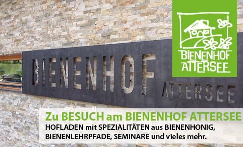 Zu Besuch am Bio-Bienenhof in Attersee