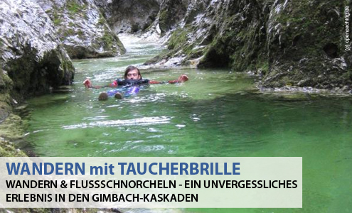 Wandern & Flussschnorcheln im Weißenbachtal